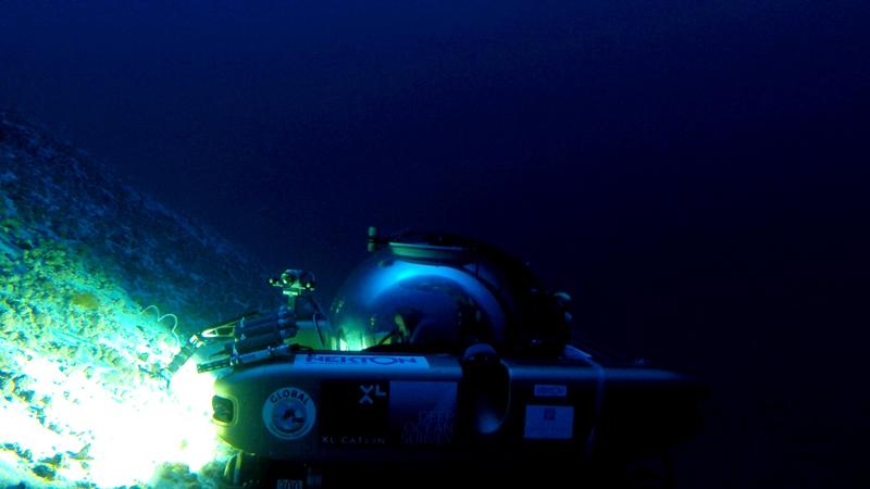 Submersible explores Argus Seamount. Courtesy of Nekton and the XL Catlin Deep Ocean Survey (8)