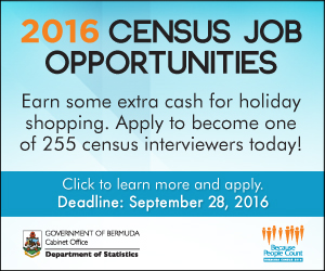 6276-Census-Job-Opportunities4-(300x250)