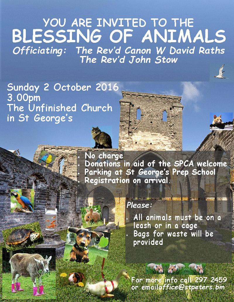 Animal Blessing Bermuda Sept 15 2016