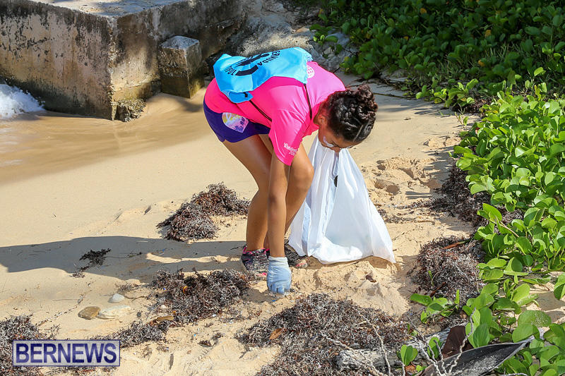 EY-Coastal-Clean-Up-Bermuda-September-17-2016-11