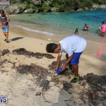 EY Coastal Clean-Up Bermuda, September 17 2016-13