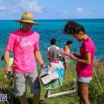 EY Coastal Clean-Up Bermuda, September 17 2016-21