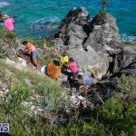 EY Coastal Clean-Up Bermuda, September 17 2016-25
