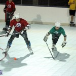 Inline Ball Hockey Bermuda August 31 2016 5