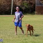 Bermuda Kennel Club Dog Show, October 23 2016-115