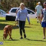 Bermuda Kennel Club Dog Show, October 23 2016-87