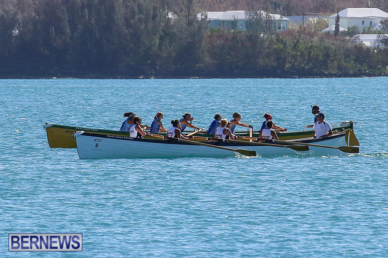 Bermuda-Pilot-Gig-Club-Gig-Regatta-October-29-2016-12
