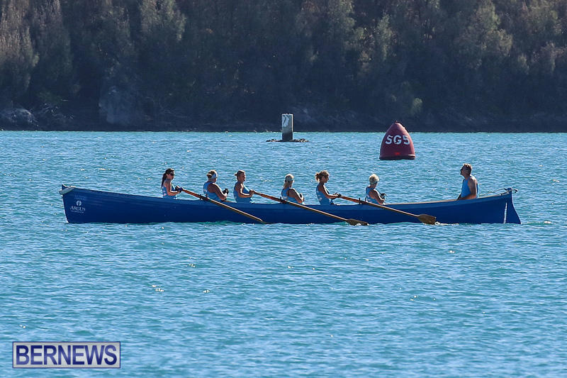Bermuda-Pilot-Gig-Club-Gig-Regatta-October-29-2016-6