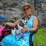 Blessing Of The Animals Bermuda, October 2 2016-18