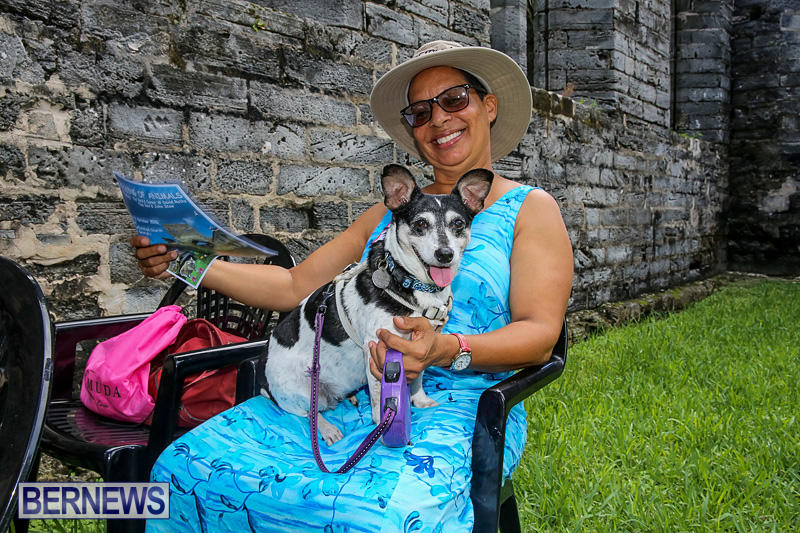 Blessing-Of-The-Animals-Bermuda-October-2-2016-18