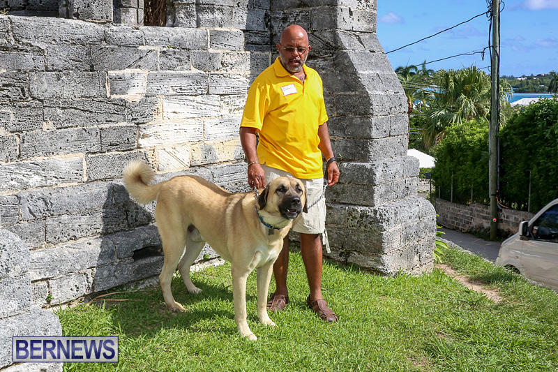 Blessing-Of-The-Animals-Bermuda-October-2-2016-34