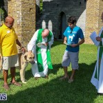 Blessing Of The Animals Bermuda, October 2 2016-39