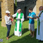 Blessing Of The Animals Bermuda, October 2 2016-45