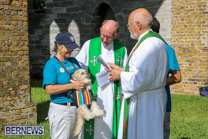 Blessing-Of-The-Animals-Bermuda-October-2-2016-56