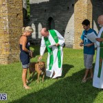 Blessing Of The Animals Bermuda, October 2 2016-57