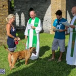 Blessing Of The Animals Bermuda, October 2 2016-58