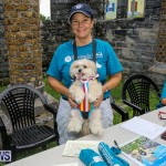 Blessing Of The Animals Bermuda, October 2 2016-6