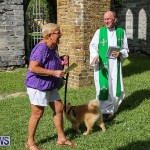 Blessing Of The Animals Bermuda, October 2 2016-68