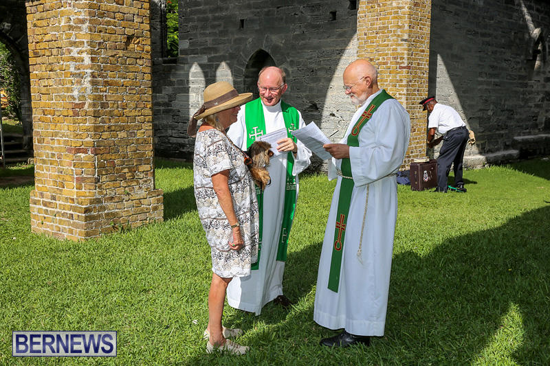 Blessing-Of-The-Animals-Bermuda-October-2-2016-71