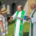 Blessing Of The Animals Bermuda, October 2 2016-72