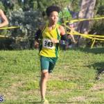 Cross Country Fort Scaur Race Bermuda Oct 8 2016 (4)