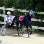 Harness Pony Racing Bermuda Oct 9 2016 (11)