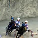 Harness Pony Racing Bermuda Oct 9 2016 (12)