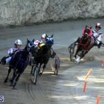 Harness Pony Racing Bermuda Oct 9 2016 (16)