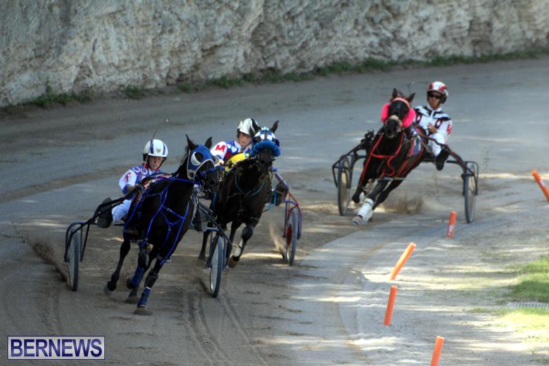 Harness-Pony-Racing-Bermuda-Oct-9-2016-16