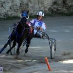 Harness Pony Racing Bermuda Oct 9 2016 (17)