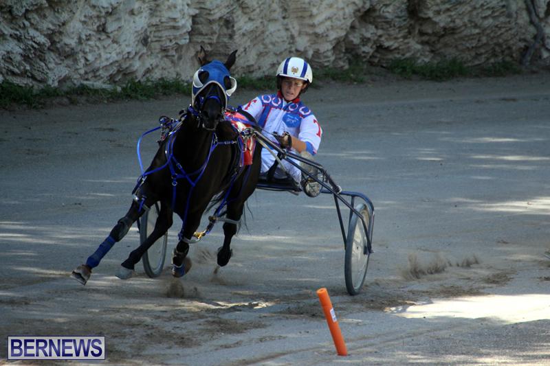 Harness-Pony-Racing-Bermuda-Oct-9-2016-17