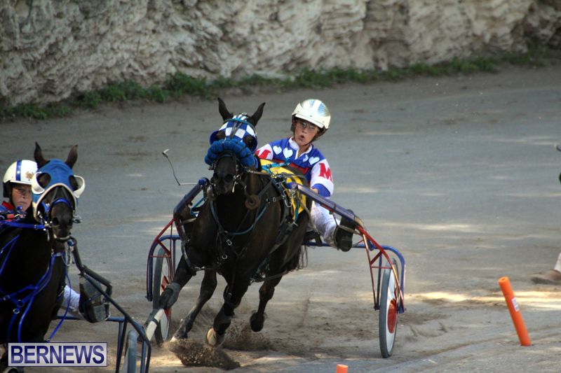 Harness-Pony-Racing-Bermuda-Oct-9-2016-18