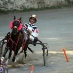 Harness Pony Racing Bermuda Oct 9 2016 (19)