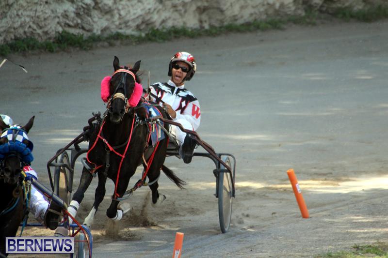 Harness-Pony-Racing-Bermuda-Oct-9-2016-19
