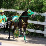 Harness Pony Racing Bermuda Oct 9 2016 (2)