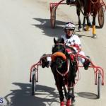 Harness Pony Racing Bermuda Oct 9 2016 (4)