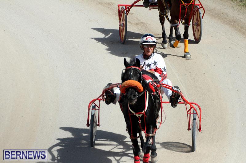 Harness-Pony-Racing-Bermuda-Oct-9-2016-4