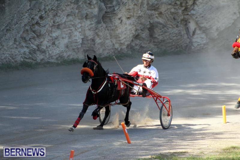 Harness-Pony-Racing-Bermuda-Oct-9-2016-6