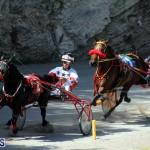 Harness Pony Racing Bermuda Oct 9 2016 (7)