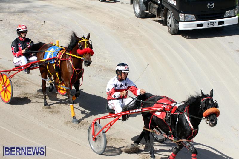 Harness-Pony-Racing-Bermuda-Oct-9-2016-8