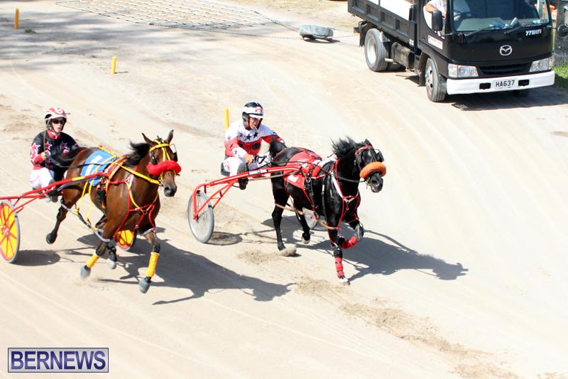 Harness-Pony-Racing-Bermuda-Oct-9-2016-9