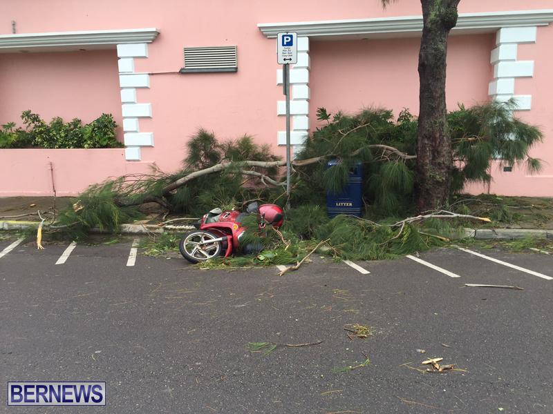 Post Hurricane Nicole Oct 13 2016 (20)