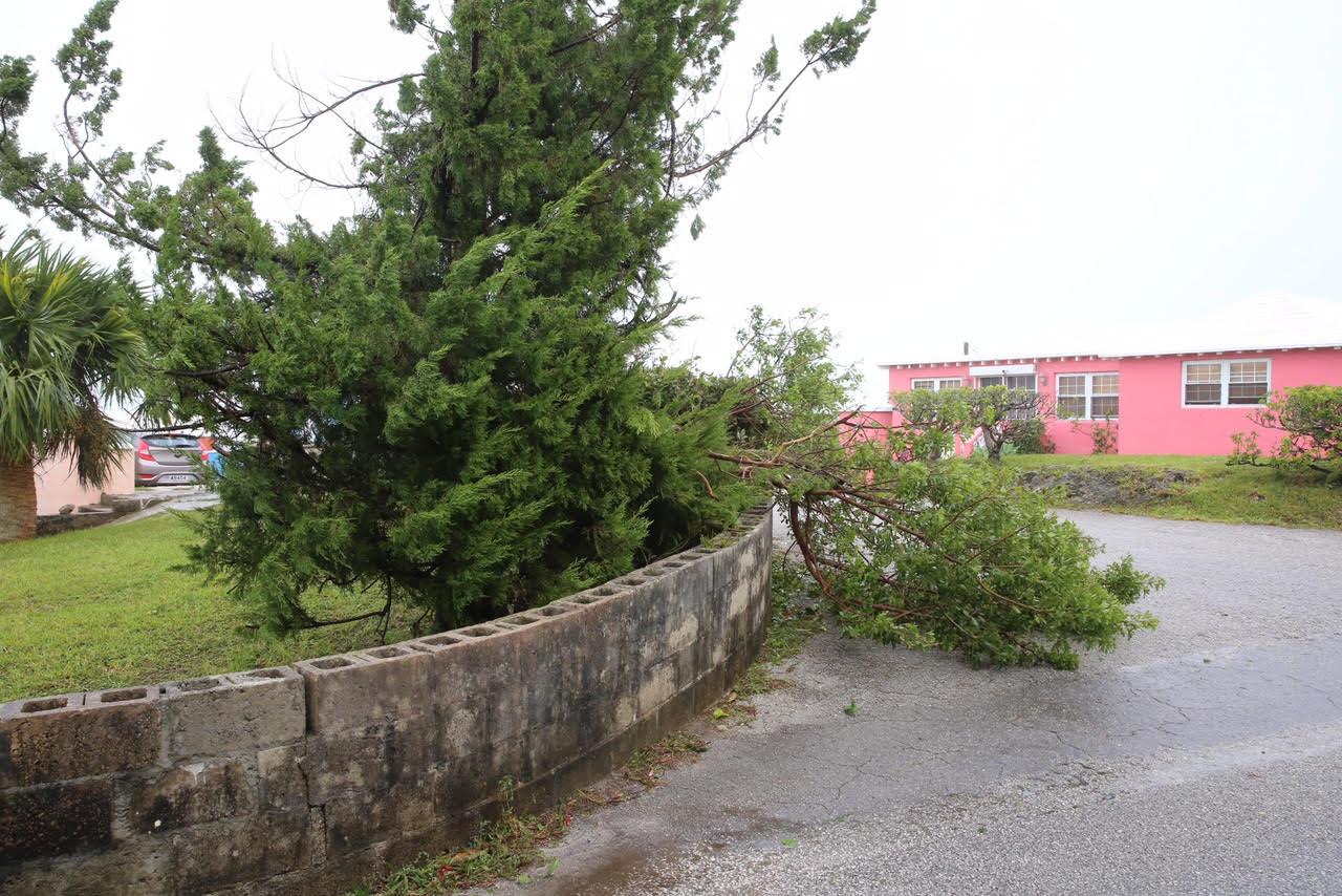 Post Hurricane Nicole Oct 13 2016 (37)