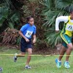 BNAA Swan's Cross Country Bermuda Nov 5 2016 (5)