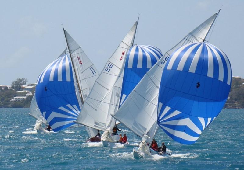 Bacardi Keelboat Regatta (1)