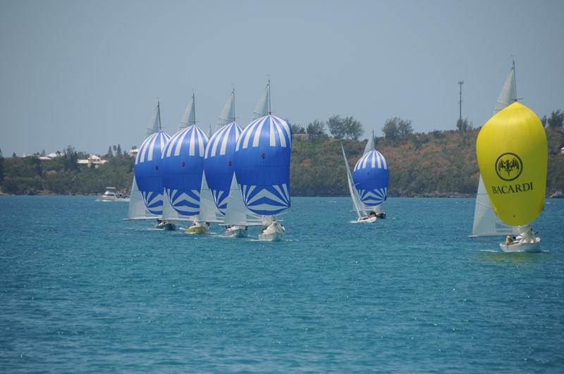 Bacardi Keelboat Regatta (4)