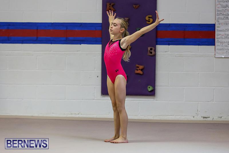 Bermuda-Gymnastics-November-12-2016-1