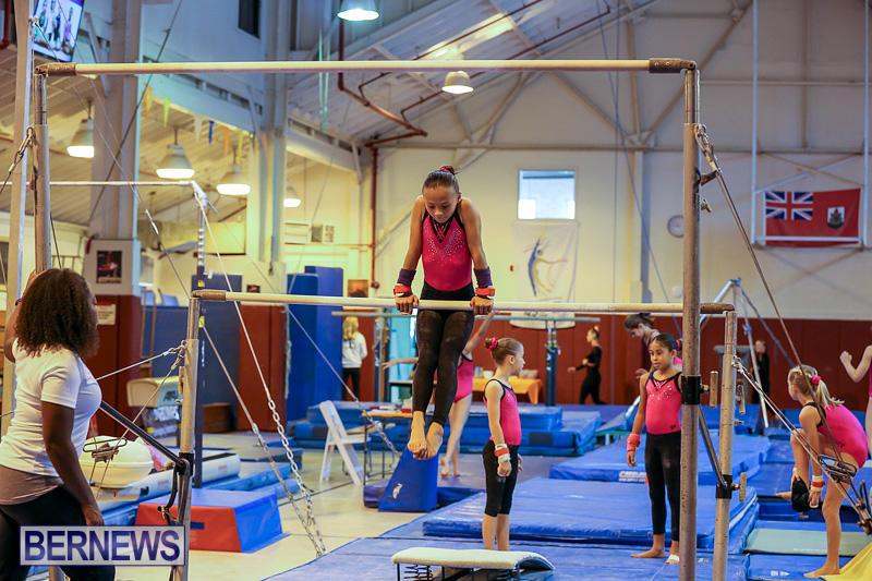 Bermuda-Gymnastics-November-12-2016-13