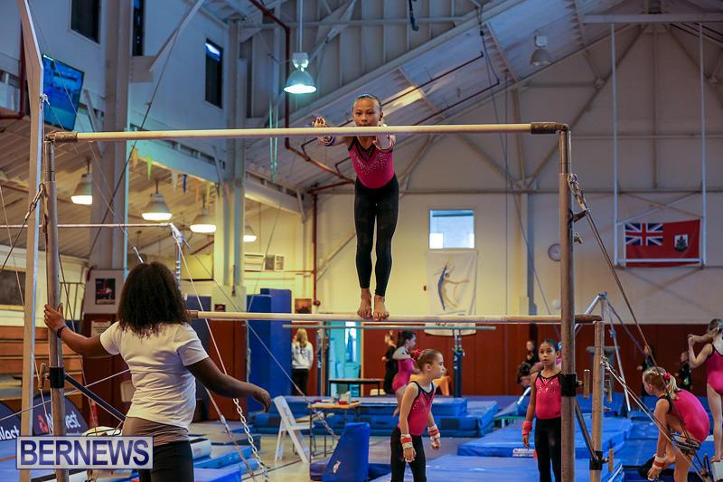 Bermuda-Gymnastics-November-12-2016-14