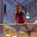Bermuda Gymnastics, November 12 2016-16